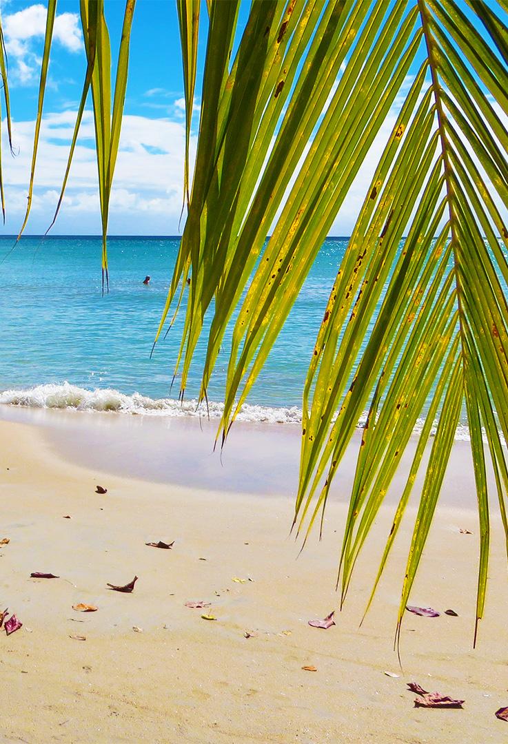 Karibik Kreuzfahrt Reisebericht Martinique Strand