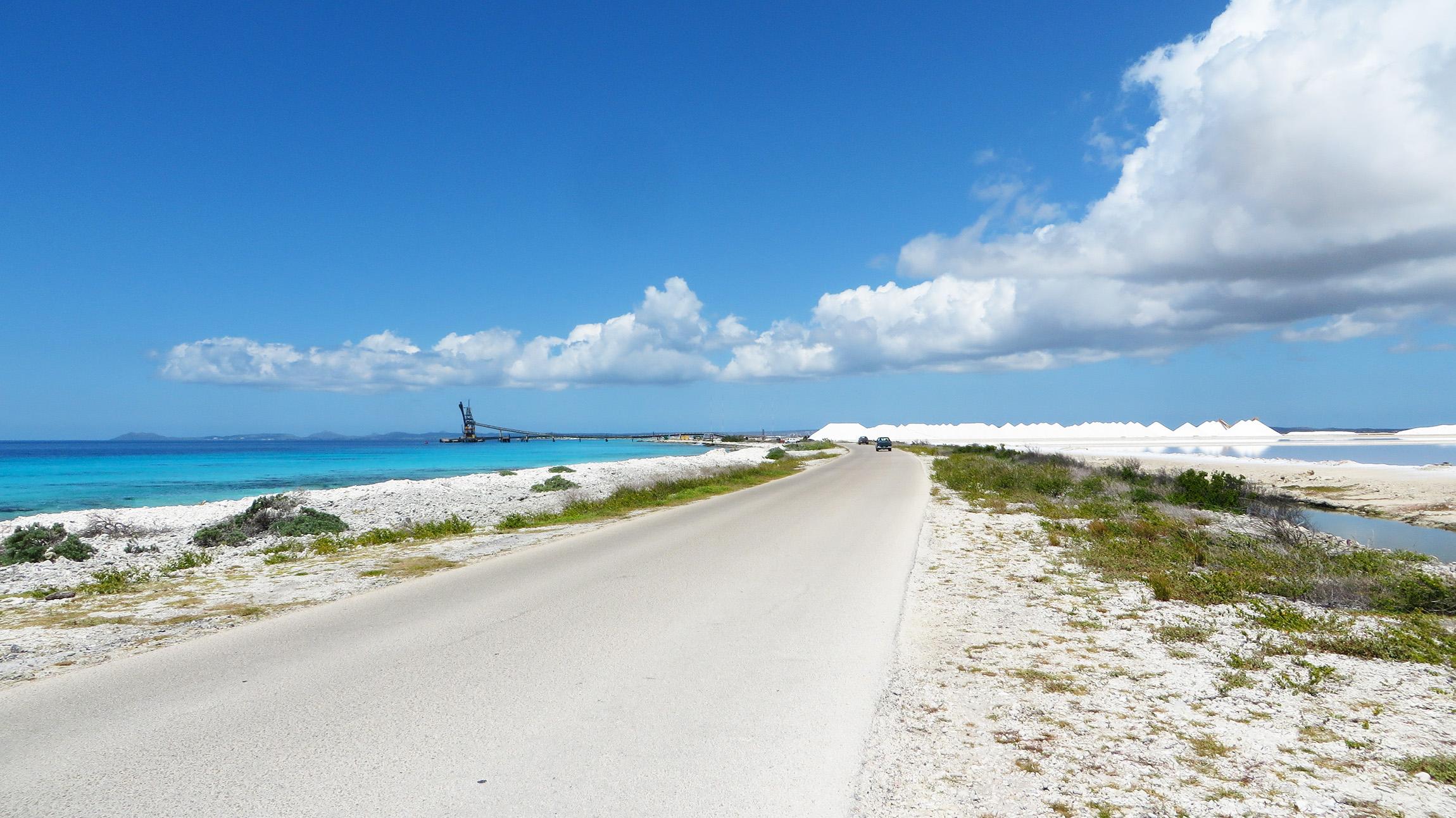 Karibik Kreuzfahrt Bonaire Salz Reisebericht