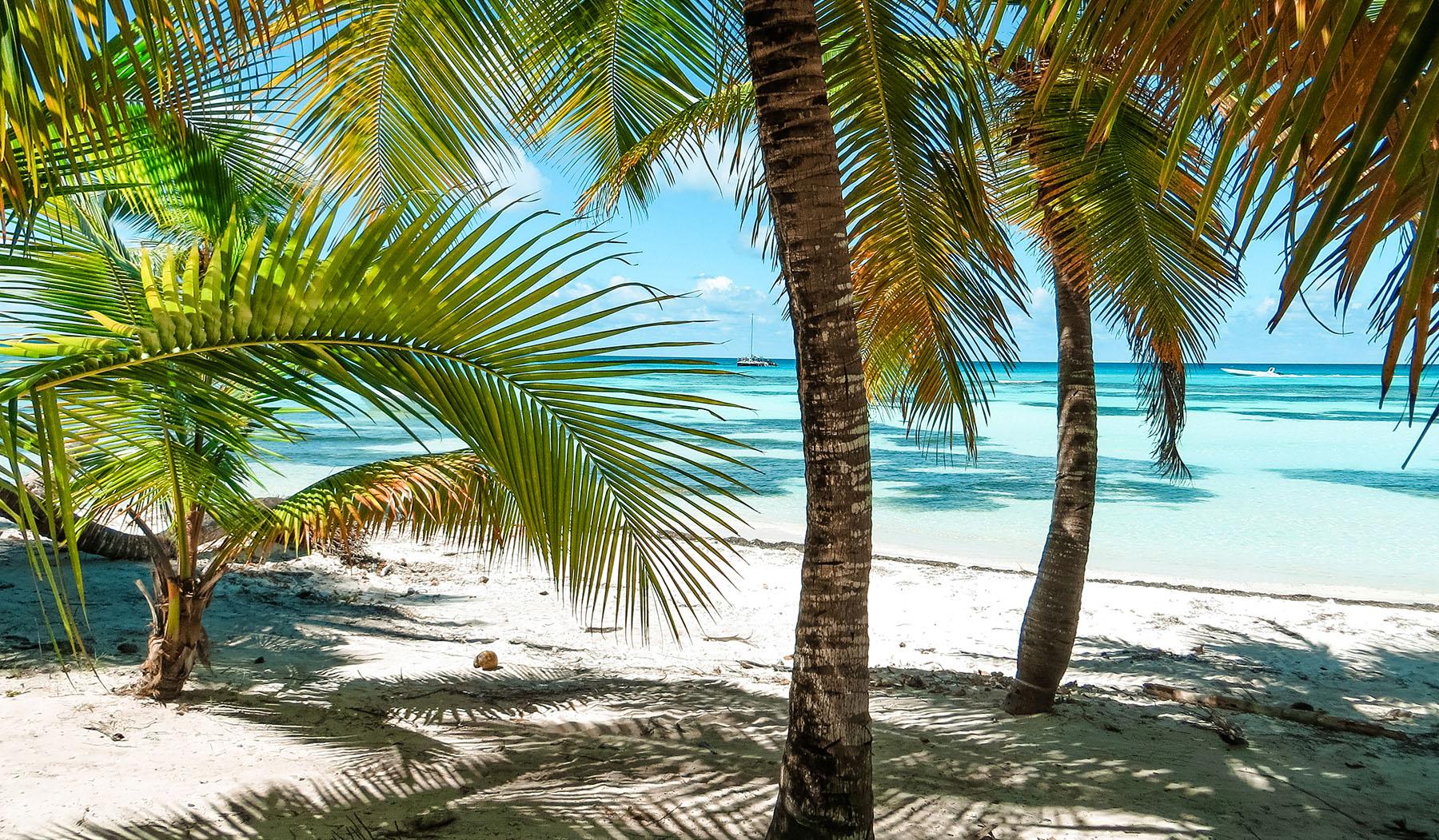 Karibik Kreuzfahrt Dominikanische Republik Isla Saona Strand Palmen