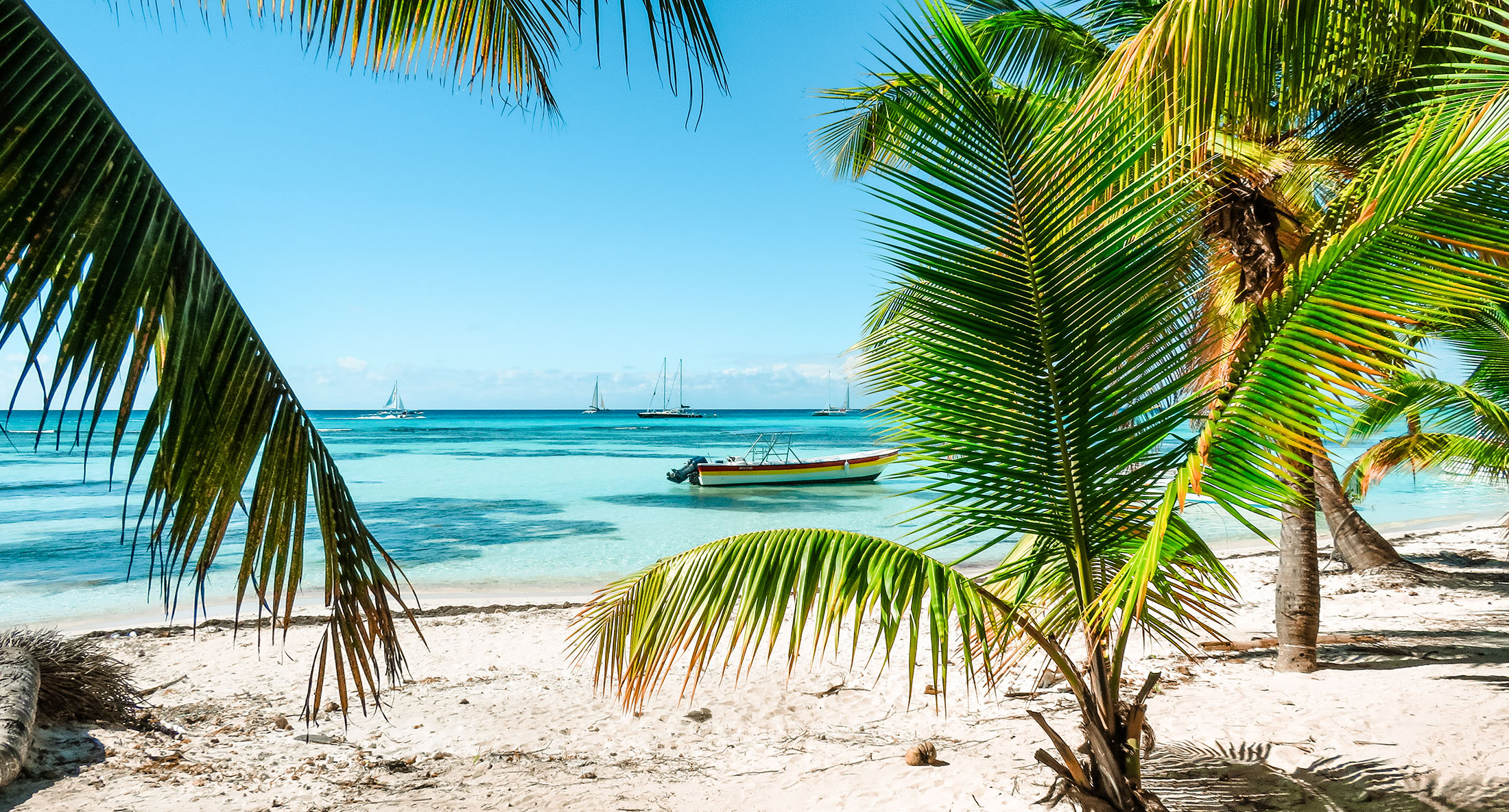 Dominikanische Republik Isla Saona Strand