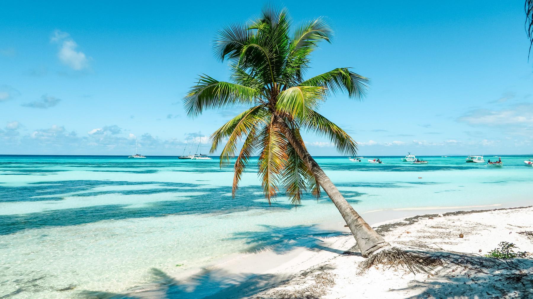 Dominikanische Republik Karibik Isla Saona Strand