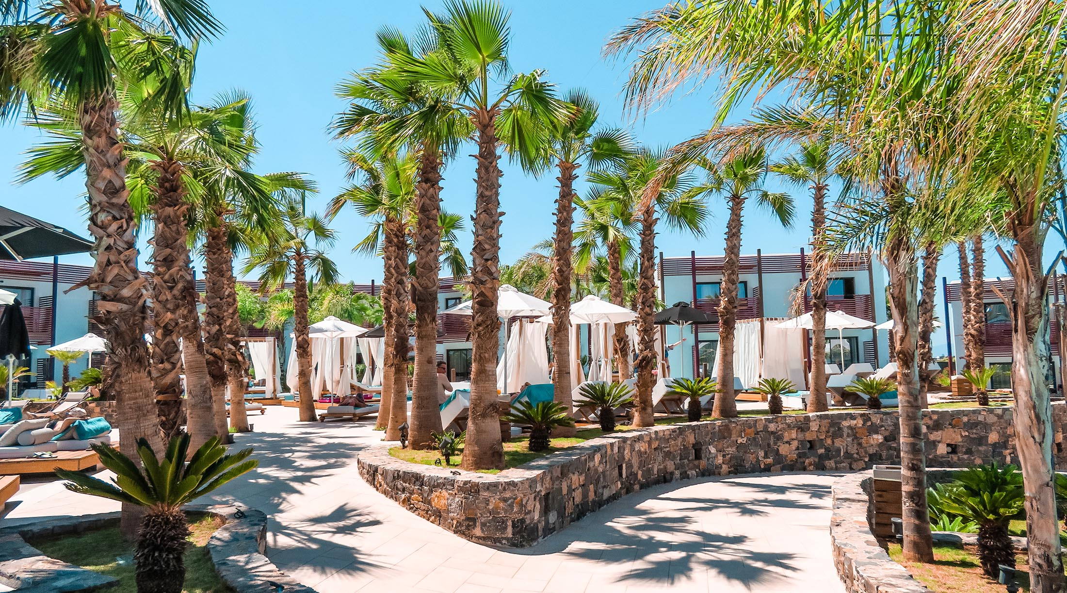Stella Island Luxury Resort Kreta Palmen