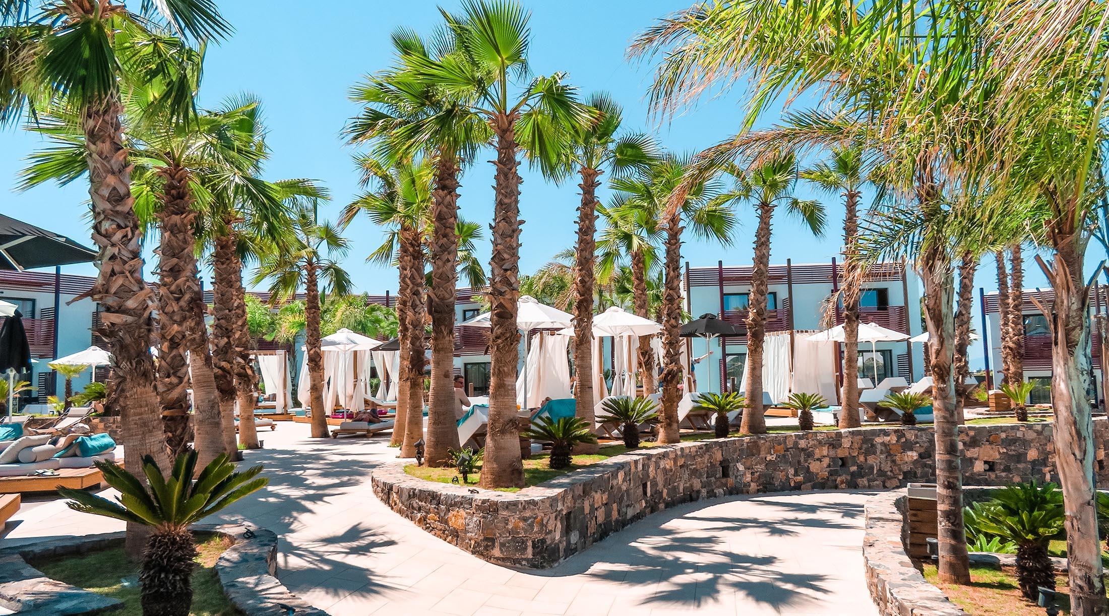Stella Island Luxury Resort Kreta Palmen