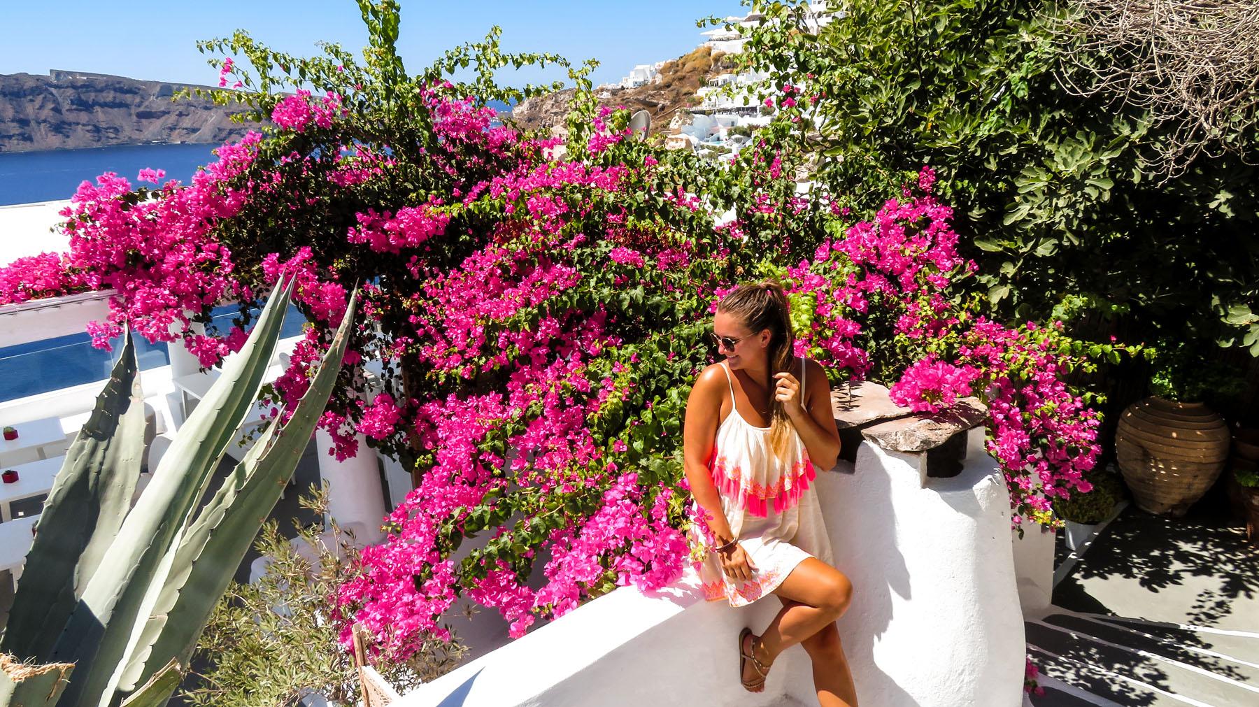 Santorini Oia Blumen