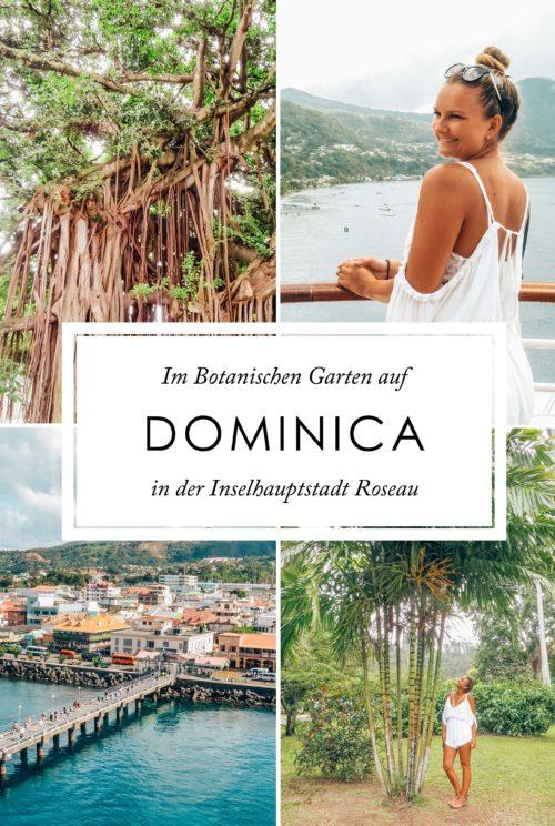Dominica Botanischer Garten Hauptstadt Dominica Pinterest