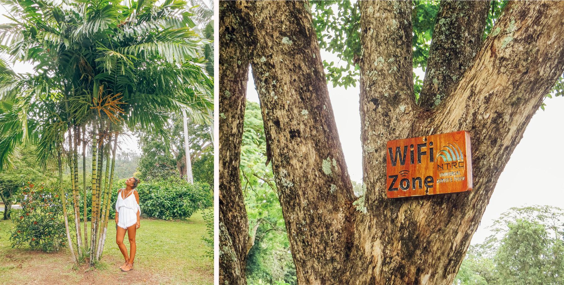 Dominica Karibik Kreuzfahrt Roseau Botanischer Garten Ausflug