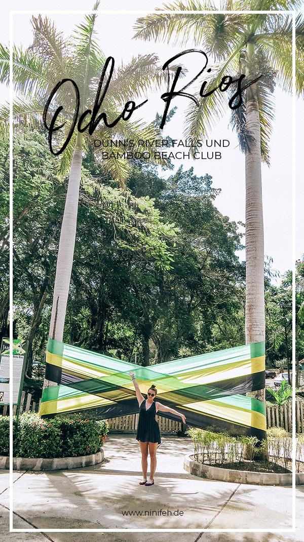 Mittelamerika Kreuzfahrt Ocho Rios Jamaika Wasserfall