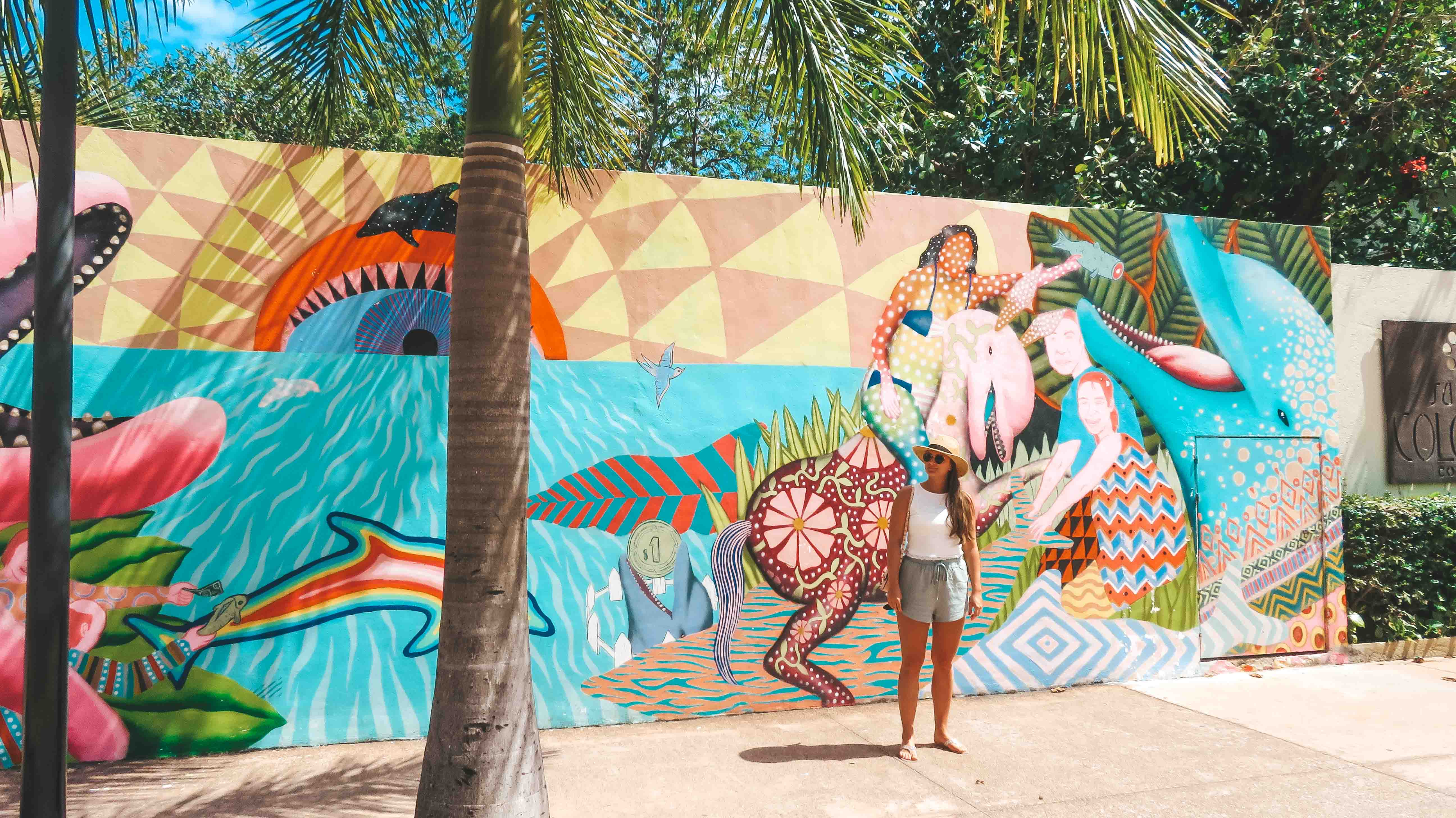 Cozumel Mexiko Ausflug Streetart