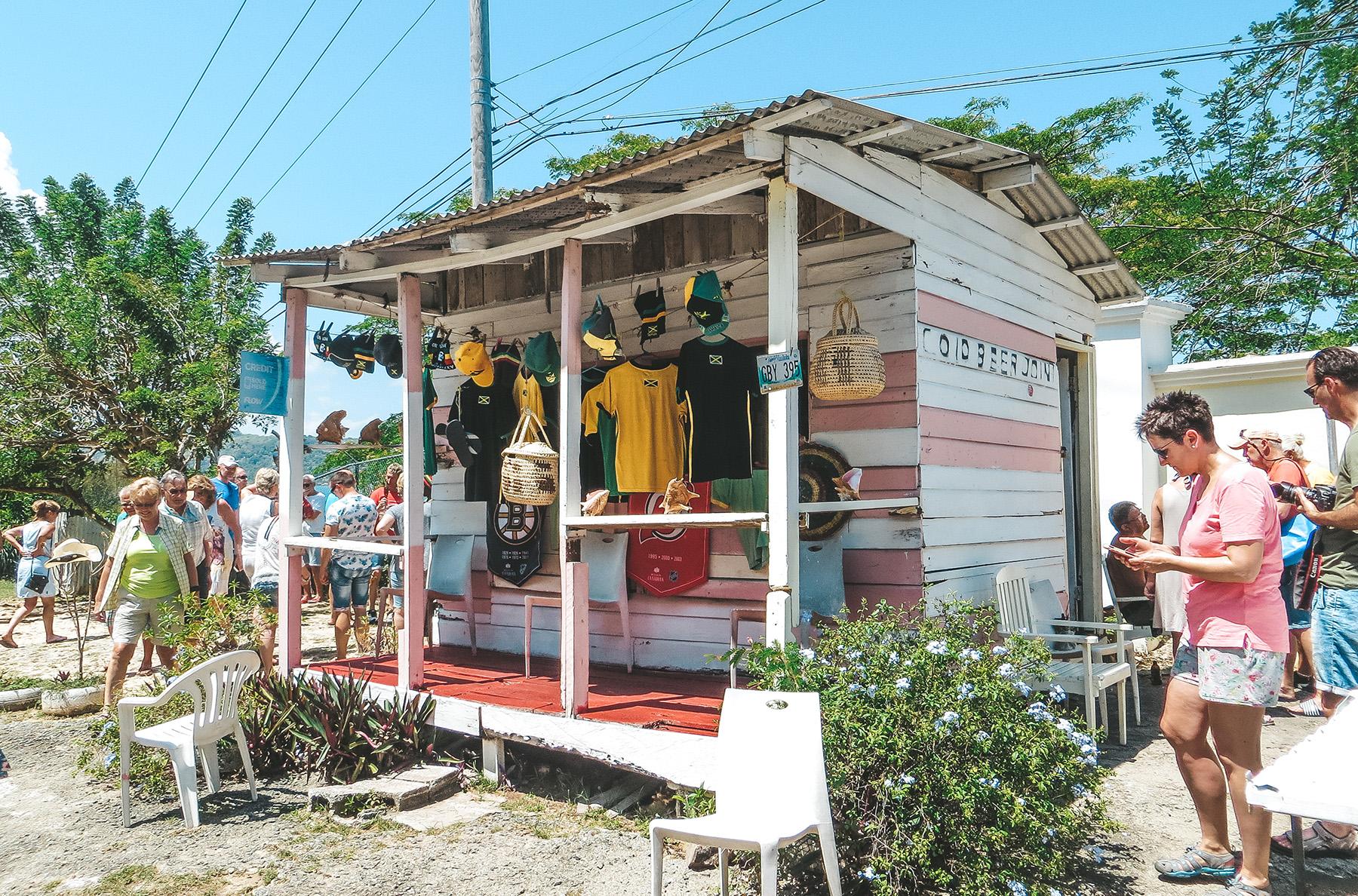 Mittelamerika Kreuzfahrt Mein Schiff 6 Ausflug Jamaika