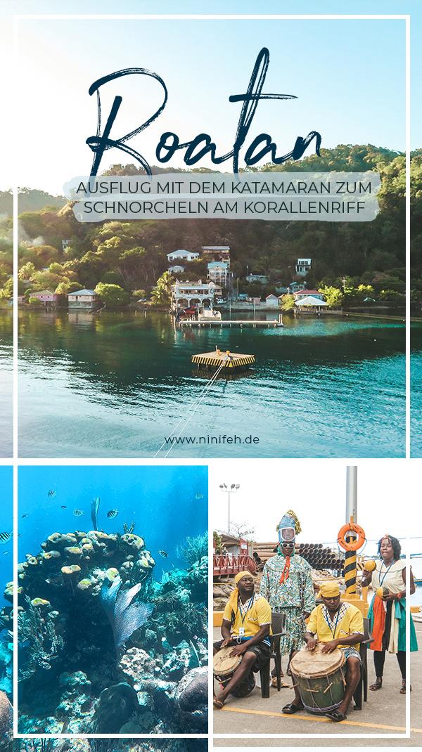 Mittelamerika-Kreuzfahrt-Roatan-Honduras-Ausflug-Schnorcheln-Korallenriff