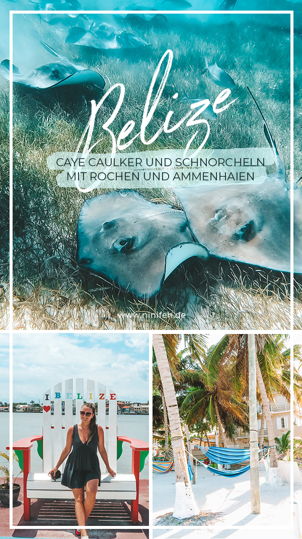 Mittelamerika Kreuzfahrt Belize Caye Caulker Schnorcheln Rochen Barrier Reef
